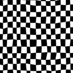 Super Speedway Checkerboard Black White Fabric