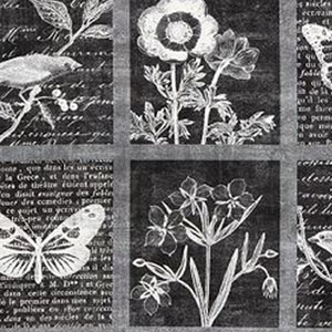Botanical Beauty Panel Smoke Black Fabric