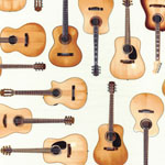 In Tune Acoustic Guitars Fabric