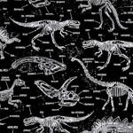 Glow in the Dark Dinosaur Skeletons Fabric